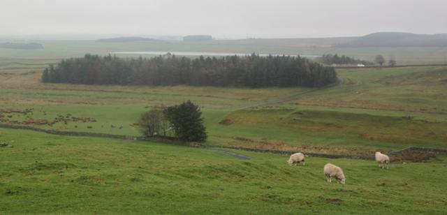 04.07.08 - Hadrian's Wall