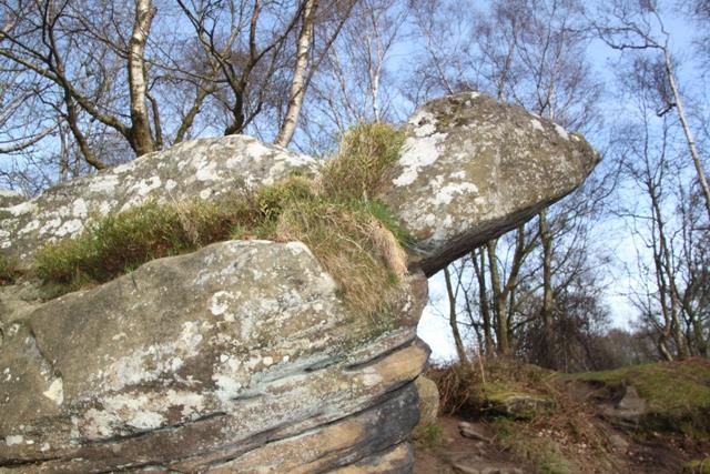 04.11.45 - Brimham Rocks