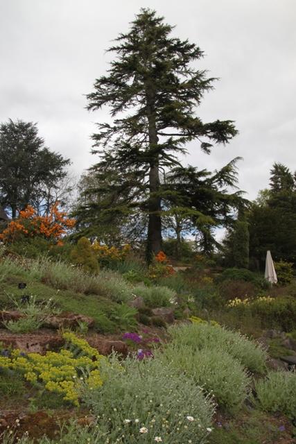 04.13.03 - Ness Gardens