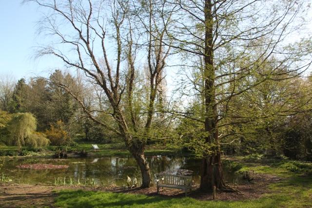 04.13.30 - Ness Gardens
