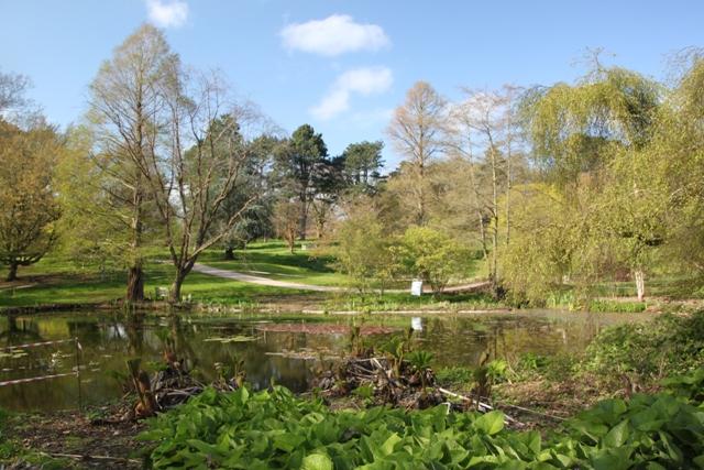 04.13.31 - Ness Gardens