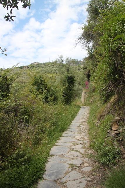 05.26.035 - Hiking the trail
