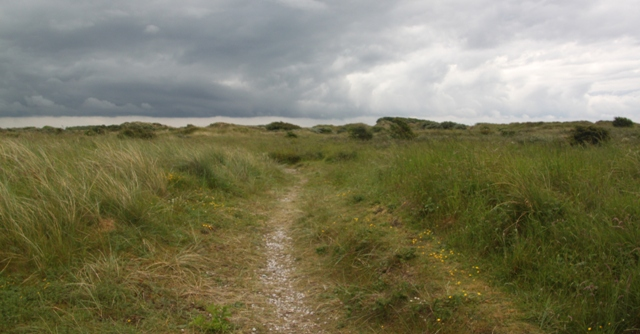 06.07.09 - Alt Estuary