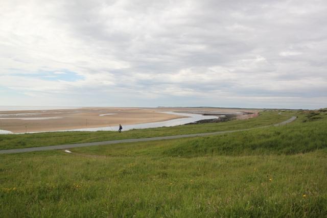 06.07.30 - Alt estuary