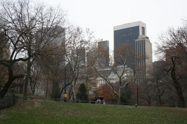 12.07.21 - Central Park