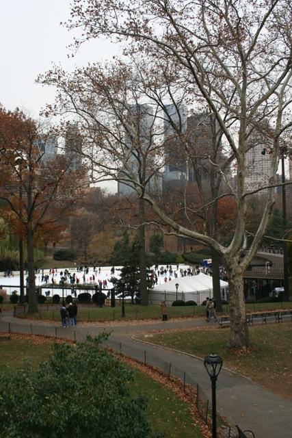 12.07.23 - Central Park
