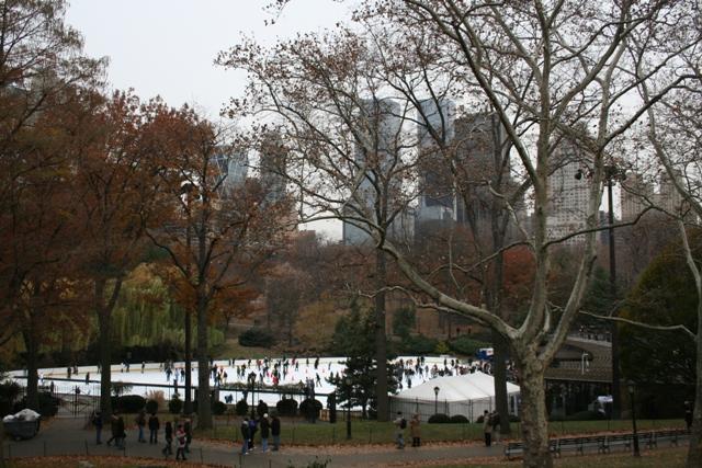 12.07.24 - Central Park