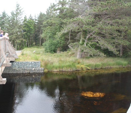 07.15.10 -  Glenveagh National Park