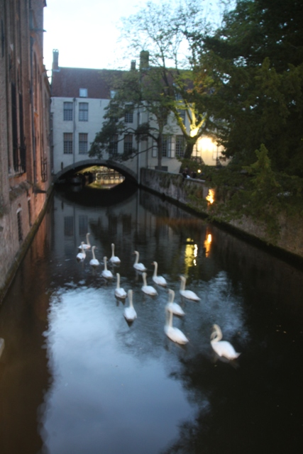 08.07.63 - Bruges by night