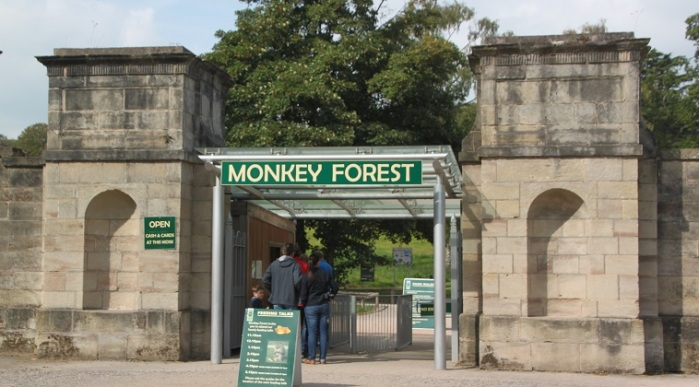 09.13.02 - Monkey Forest