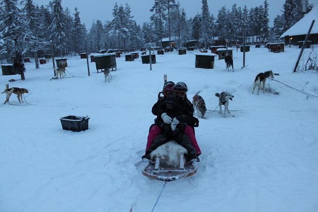 12.19.01 - Husky sledding